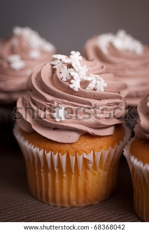 vanilla cupcake with chocolate icing