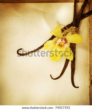 Vanilla flower and pods over vintage paper background