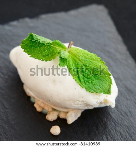 Vanilla ice-cream with mint leaves, close-up shot
