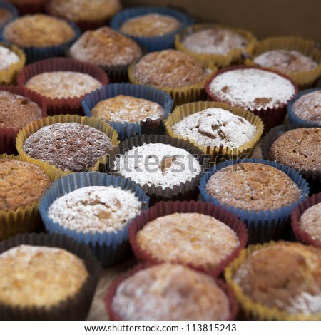 Vanilla muffins with chocolate chips. Shallow depth of field.