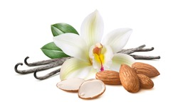 Vanilla pods with flower and almond nuts isolated on white background. Package design element. Clipping path