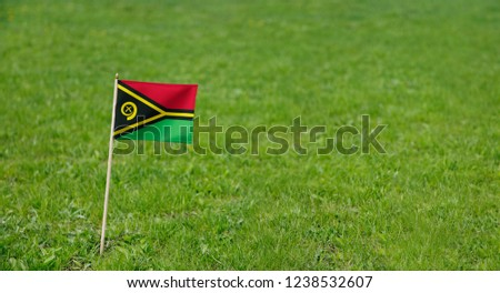 Vanuatu flag. Photo of Vanuatu flag on a green grass lawn background. Close up of national flag waving outdoors. #1238532607