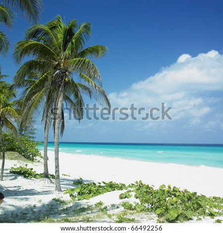 Varadero, Matanzas Province, Cuba - stock photo