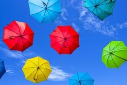 varicoloured umbrella fly on a blue sky  background