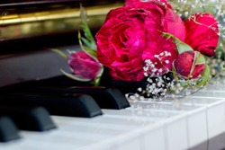Variegated Red Rose Gypsophlia baby's breath bouquet on piano keys rosebud natural rose valentines day