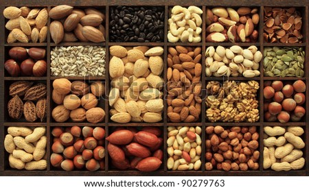 Varieties of nuts and other seeds. Food and cuisine.