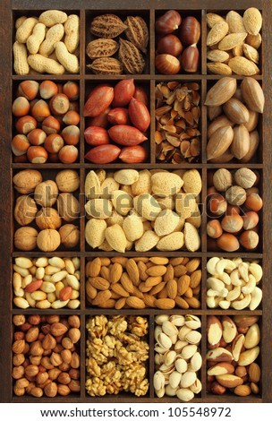 Varieties of nuts: peanuts, hazelnuts, chestnuts, walnuts, cashews, pistachio and pecans. Food and cuisine. - stock photo
