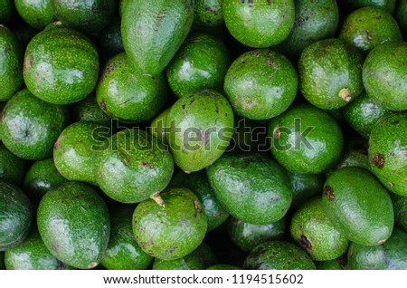 Variety of avocado from Panama. Avocados of different shapes, sizes and flavors are found in Panamanian street markets. The varieties come from all the corners of the countryside. #1194515602