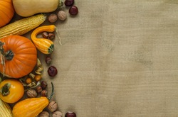 Variety of edible and decorative gourds and pumpkins on jute material. Autumn flat lay composition of different squash with chestnuts, walnuts, hazelnuts, corn on the cob, physalis peruviana fruits.