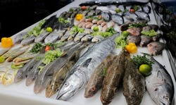 Variety of fishes displayed in supermarket with organic vegetables