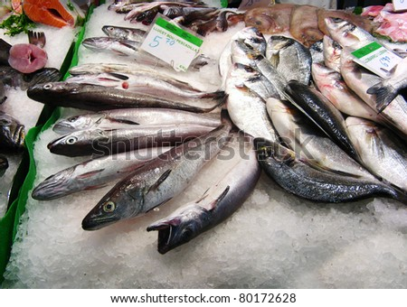 Variety of fresh fish in the market - stock photo