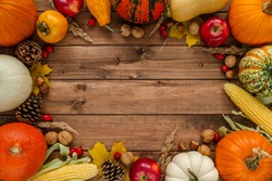 Variety of gourds, squash types and pumpkins. Flat lay composition frame with walnuts, hazelnuts, apples, cones, rosehips, kaki and corn on the cob. Copyspace on wooden background.
