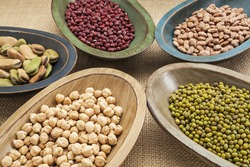 variety of legumes (fava bean, mung bean, adzuki, pinto, chickpea) in colorful rustic wood bowls on canvas