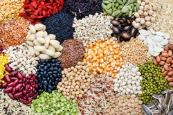 Variety of natural cereal food consisted of soybean,rice,goji berry,sesame,pumpkin,watermelon,sunflower seed,black eye pea,mung,peanut,flax seed,corn,pinto,garbanzo,black,gree,and  red bean seed