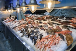 Variety of sea fishes on the counter in a greek fish shop.