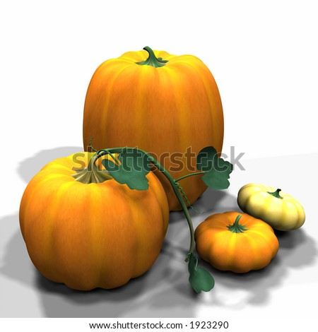 Various Autumn Pumpkins. One with a vine.