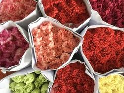 Various color of carnation flowers in bulk at Flower Market