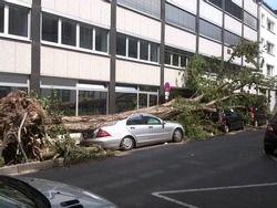 Various damaged cars were destroyed by a thunderstorm or windstorm or other weather phenomenon and show insurance coverage, actual total loss, total write-off for car insurance and insurance concepts