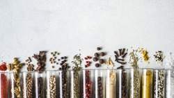 Various dry spices in glass tubes and spilled on gray background. Copy space. top view