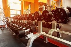 Various dumbbells in gym