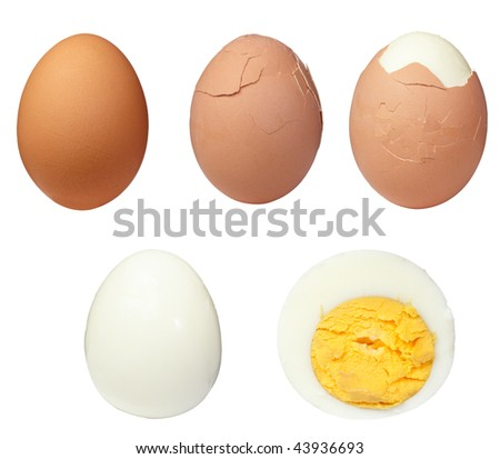 various eggs on white background. each one is in full camera resolution