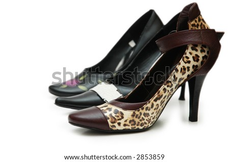 Various female shoes isolated on the  white