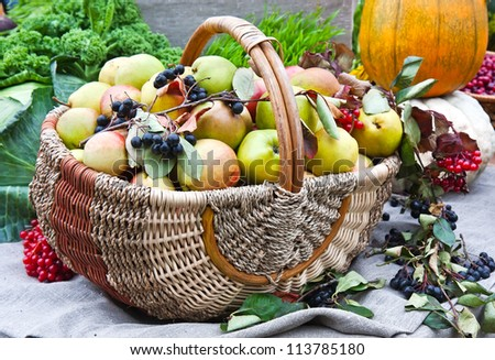 Various fruit in autumn harvest festival