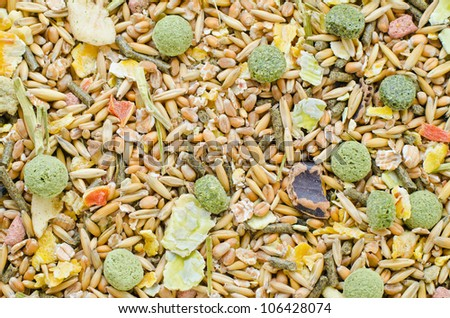 Various grains used to feed hamsters and other small rodents.