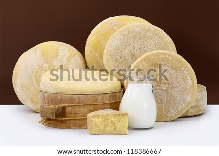 various hard parmesan cheese on the white table with a jug of milk
