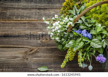 Various herbs from the garden on wooden table. Fresh herb bunch.
