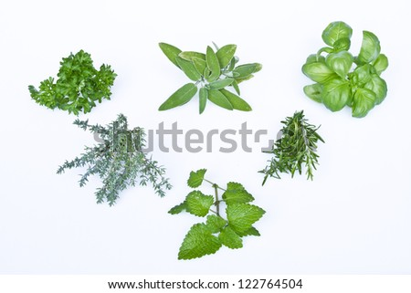 Various herbs which are essential in any kitchen