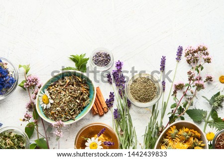 Various kinds of herbal tea. Natural herbs medicine. Top view with copy space #1442439833