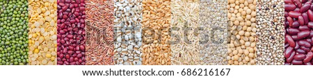 Various kinds of natural grains and cereals, consisted of green bean, soybean, red bean, rice seed, wheat, and millet, for food raw material and agricultural product concept #686216167