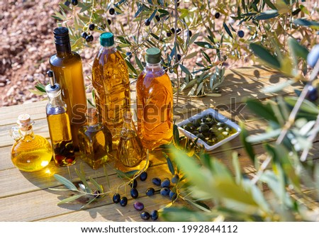 Various kinds of oil on the table on background of olive tree