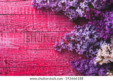 Various lilac on pink wooden background