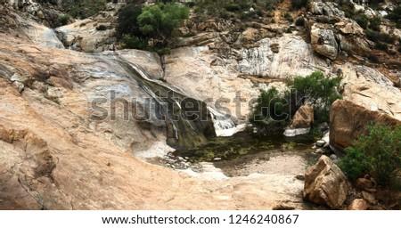 Various nature pics