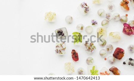 Various plants in ice rectangles and balls #1470642413