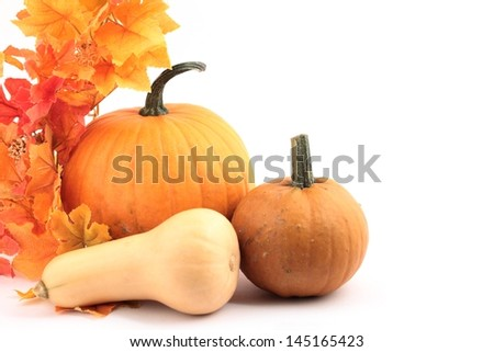 Various pumpkins and colorful leaves on white background.