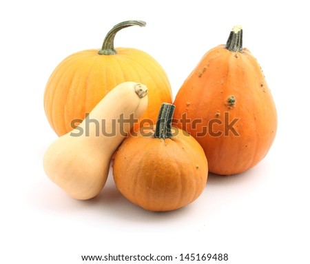 Various pumpkins on white background.