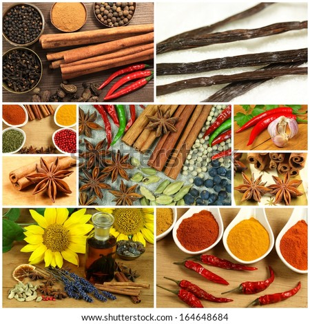 Various spices in collage composition