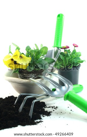 various tools for planting with pansies and daisies