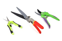 Various types of garden shears and pruning shears for cutting trees and bushes. Isolated on light background close-up