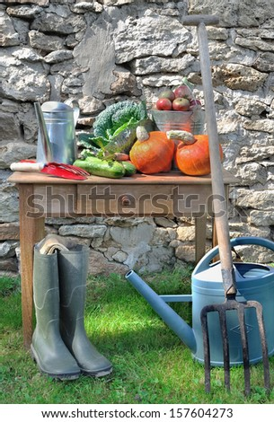 various vegetables on a table in a garden with tools
