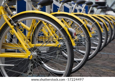 Various yellow bikes in a row