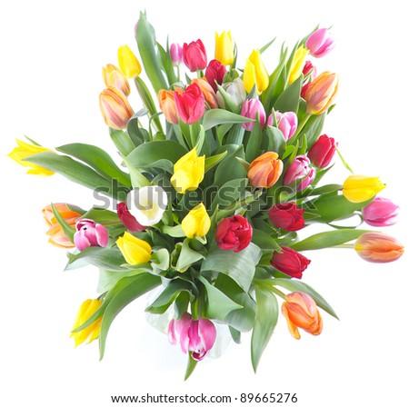 Vase full of Tulips isolated on  white background