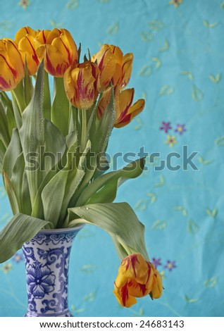 vase of flame tulips with water drops