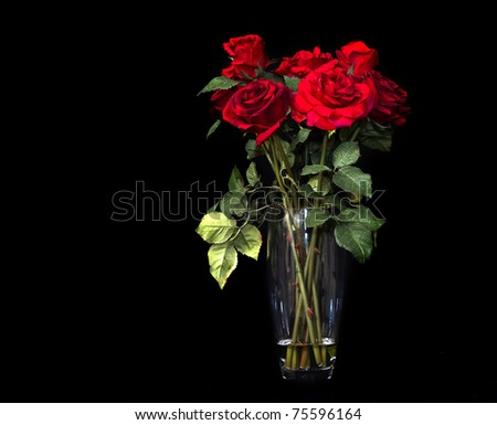 Vase of ruby red roses against black background