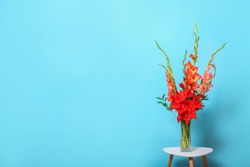 Vase with beautiful gladiolus flowers on wooden table against blue background. Space for text