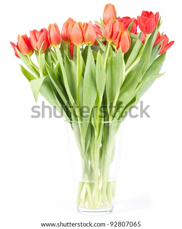 Vase with red tulips isolated on a white background