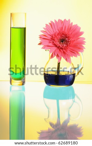 Vases with multi-coloured water on yellow background